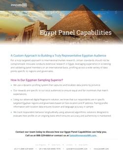 Innovate Egypt Panel Capabilities-1